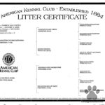 Rebels_liter_certificate_pedigree_22612